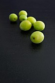 Ume on a dark surface