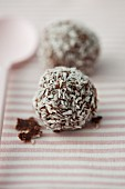 Chocolate pralines with coconut flakes