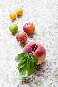 Greengages, yellow plums and a white peach with a leaf