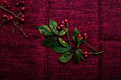 Rosehips and autumnal blackberry leaves on an old red tablecloth