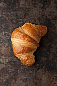 A croissant on a baking tray