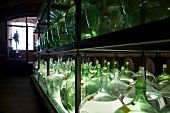 Keller mit Essigflaschen im Regal