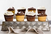 Vanilla and chocolate cupcakes for a party