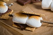 Smores with toasted marshmallows