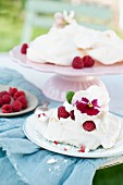 Raspberry pavlova with cream decorated with viola flower