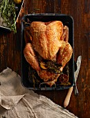 Roast turkey in roasting tin (seen from above)