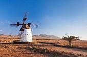 Traditionelle Windmühle auf Fuerteventura; El Cotillo, Kanarische Inseln, Spanien