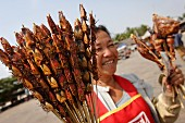 A woman selling beetle skewers at a bus stop in the Savannakhet province, Laos, Indochina, South-East Asia