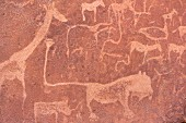 A prehistoric cave drawing in Twyfelfontein in Damaraland in the Kunene Region in Namibia