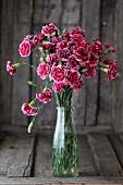Rosa Nelken in einer Glasvase