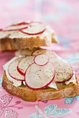 Slices of toasted bread topped with cream cheese and radishes