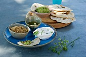 Various meze and unleavened bread