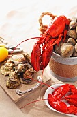Lobster, clams and oysters on a sandy surface