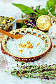 Traditional Bulgarian Tarator soup with herbs, lemons and salted corn