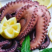 Boiled octopus with lemon