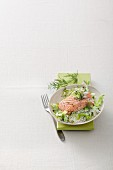 Salmon on a bed of pointed cabbage with a dill and soy sauce