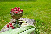 Chocolate and avocado mousse with fresh raspberries