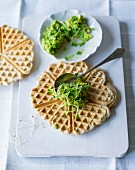 Waffles with avocado and beansprout cream