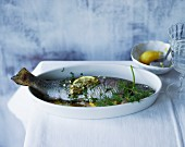 Trout in a herb broth with fresh lemons
