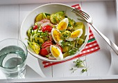 Potato salad with radishes, hard-boiled eggs and fresh garden cress