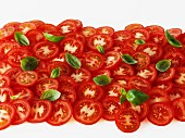 Tomato slices and basil leaves