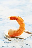 A cooked king prawn tail
