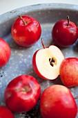 Mehrere rote Holzäpfel in einem Metalltablett