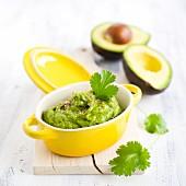 Pesto aus Avocado mit Koriander und Mandeln