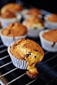 Muffins mit Schokostückchen auf dem Backrost
