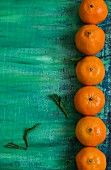 A row of clementines on a turquoise surface