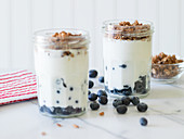 Blueberry parfait with fresh blueberries, Greek yogurt and chocolate muesli