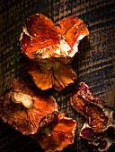 Fresh lobster mushrooms on rustic wood surface