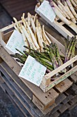 Asparagus in crates at the Torvehallerne market in Copenhagen