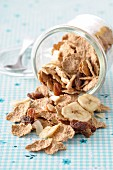 Spelt flakes with dried fruit
