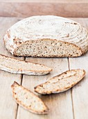 A round loaf of homemade sour dough rye-wheat bread