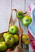 Freshly picked Bramley apples in a jute bag hanging on white wooden board