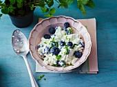 Coarse cream cheese with blueberries and mint