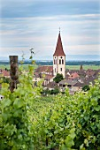 Ammerschwihr on the Alsatian wine route