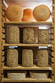 Various expensive cheese sorts for cultivation in the ripening chamber, Alsace