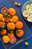 Zitrusfrüchte in einem Drahtkorb; in einer Schale ausgepresste Zitronenhälften
