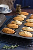 Lemon and thyme madeleines in a madeleine tin