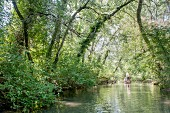 A boat trip through the Ile de Rhinau, part of Le Grand Ried nature reserve, Alsace