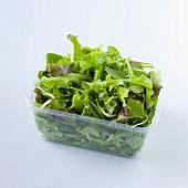 Lettuce in a plastic punnet
