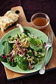 Spinach salad with quinoa, cucumber and radicchio