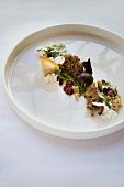 Appetiser: wild herbs, porcini mushrooms and sloes, restaurant 'St. Andreas' in the 'Blauer Engel' hotel in Aue
