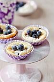 Blaubeer-Käsekuchen-Muffins