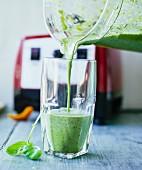 Algen-Chicoree-Smoothie mit Hanfsamen, Vogelmiere, Basilikum und Petersilie einschenken