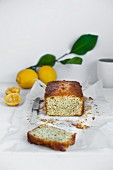 Lemon and poppy seed cake on a baking paper with a knife and fresh lemons