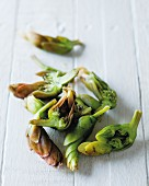 Waterblommetjies (aka Cape Pond Weed) on a white wooden surface