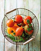 Fresh tomatoes in a wire basket